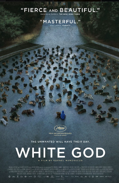Kornél Mundruczó_Hungary_White_God_Bodie_Luke_Shelter_Dogs_Filmcourage_Movies_2