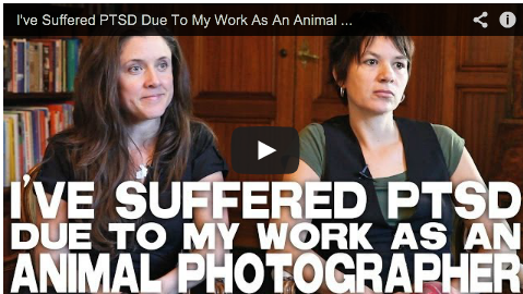 I've Suffered PTSD Due To My Work As An Animal Photographer by Jo-Anne McArthur The Ghosts in Our Machine FilmCourage