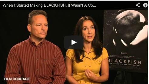 when-i-started-making-blackfish-it-wasnt-a-controversial-film-by-gabriela-cowperthwaite-jeffrey-ventre-film-courage-orca-whales-doc
