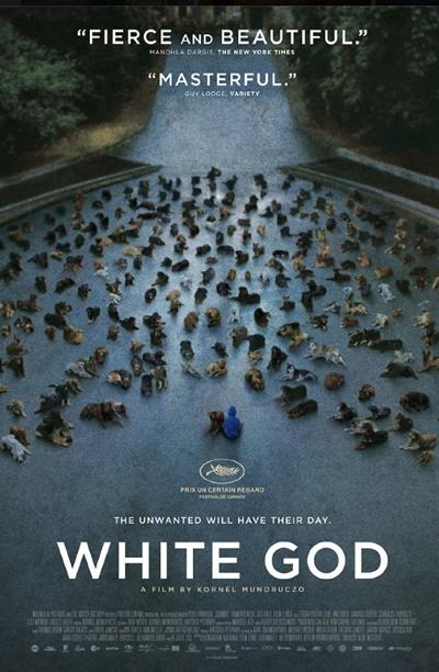 Kornél Mundruczó_Hungary_White_God_Bodie_Luke_Shelter_Dogs_Filmcourage_Movies_2